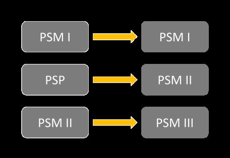 board_psm